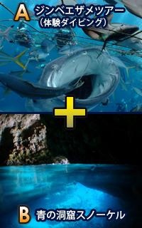 ジンベエザメ体験ダイビングツアー+青の洞窟スノーケル