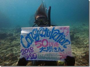 『50DIVE』おめでとう!