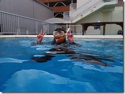 okinawa diving1021