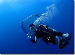 okinawa diving1110