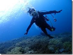 okinawa diving1124
