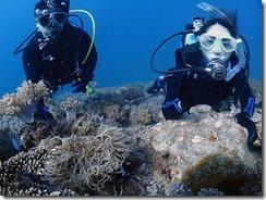 okinawa diving1126