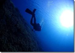 okinawa diving1130