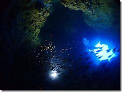 okinawa diving1138