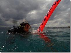 okinawa diving1240