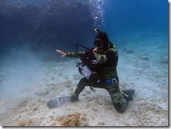 okinawa diving1313
