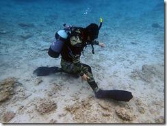 okinawa diving1314