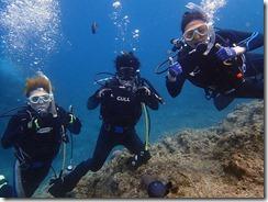 okinawa diving1317