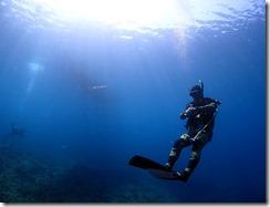 okinawa diving1330