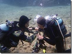 okinawa diving1332