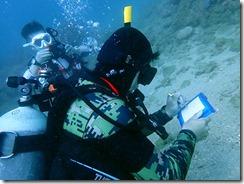 okinawa diving1339