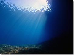 okinawa diving1443