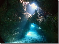 okinawa diving1460