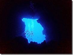 okinawa diving1474