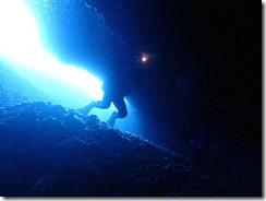 okinawa diving1482