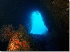 okinawa diving1518