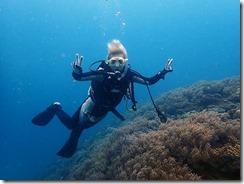 okinawa diving717
