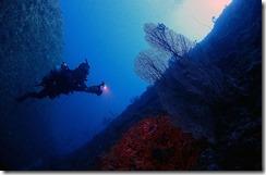 okinawa diving737