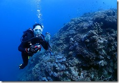 okinawa diving770