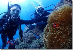 okinawa diving771