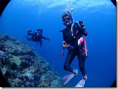 okinawa diving784