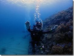 okinawa diving798