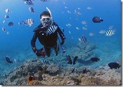 okinawa diving807