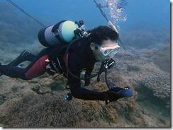 okinawa diving826