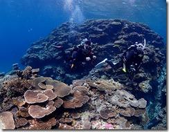 okinawa diving950
