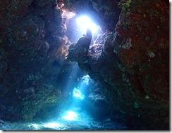 okinawa diving951