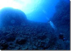 okinawa diving959