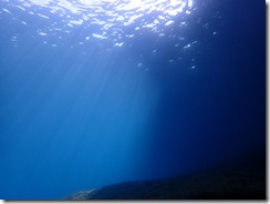 okinawa diving989