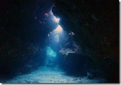 okinawa kerama diving1009