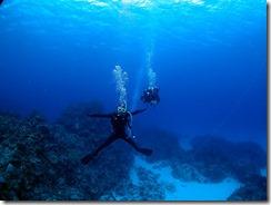 okinawa kerama diving1057