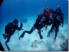 okinawa kerama diving1089