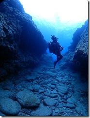 okinawa kerama diving1097