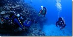 okinawa kerama diving1104