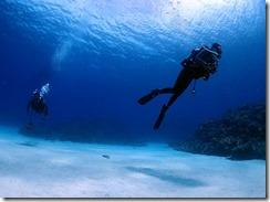 okinawa kerama diving1165