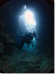 okinawa kerama diving1170
