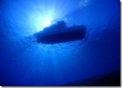 okinawa kerama diving1174