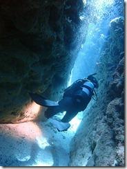 okinawa kerama diving1181