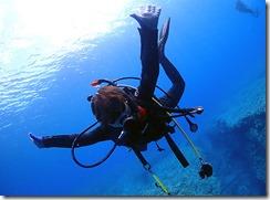 okinawa kerama diving1182
