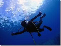okinawa kerama diving1183