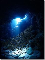 okinawa kerama diving1215