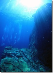 okinawa kerama diving1216