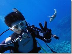 okinawa kerama diving631