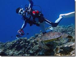 okinawa kerama diving632