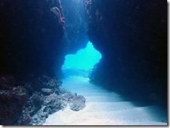 okinawa kerama diving673