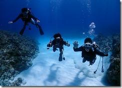 okinawa kerama diving740