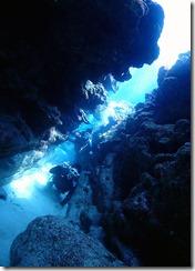 okinawa kerama diving7421